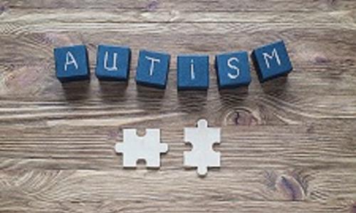 Summercourse: omgaan met autisme     Gevoel uitzetten